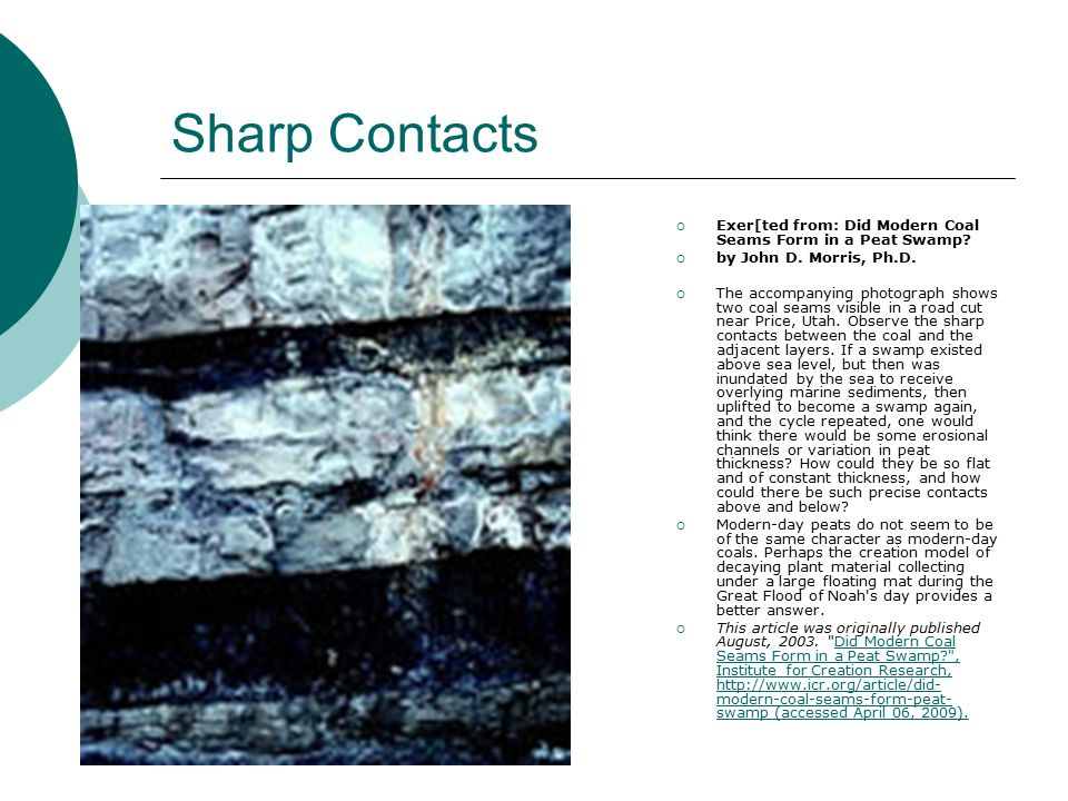 Sharp Contacts Exer[ted from: Did Modern Coal Seams Form in a Peat Swamp by John D. Morris, Ph.D.